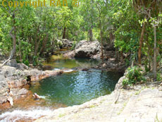 swimming at Buley Rockhole in Litchfield National Park.
