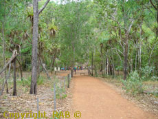Easy access footpaths at Wangi Falls