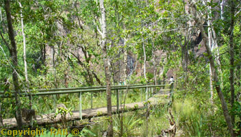 Wangi Falls boardwalk