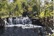 Swimming above the smaller water holes which are located above the falls